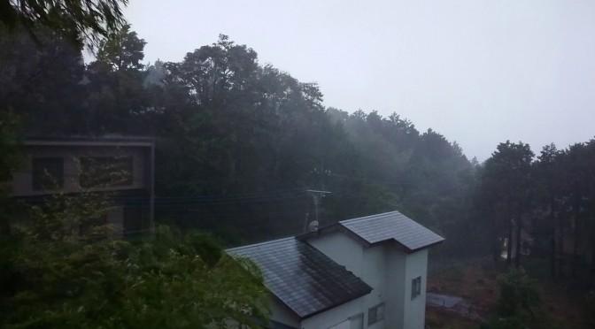 凄い台風でした、、、